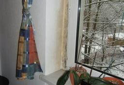 Schimmel-an-der-Fensterleibung - Sachverständiger Schimmelpilzschaden Berlin