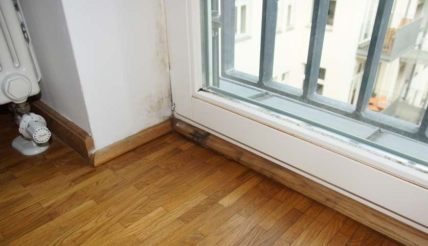 ursachen schimmel im haus schimmelproblem berlin. Black Bedroom Furniture Sets. Home Design Ideas